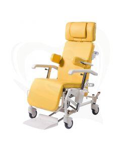 Alesia geriatrische rollende stoel